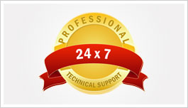 professional 24 hours support guarantee